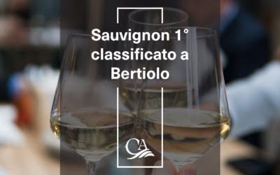 Sauvignon 1° classificato a Bertiolo