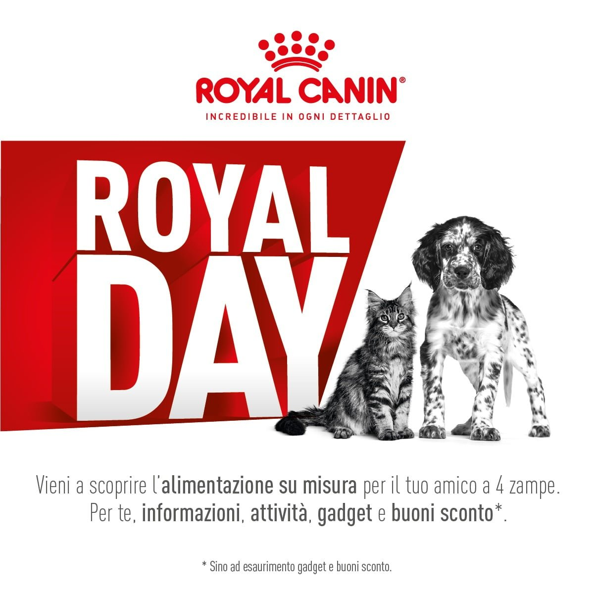 Royal Day 2019