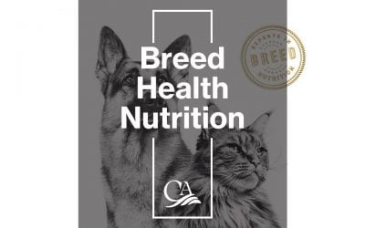 Royal Canin – Breed Health Nutrition